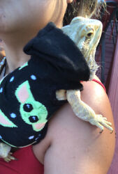 BABY YODA PRINTS 2 XLRG SLEEVELESS BODY HOODY HANDMADE SHIRT 4 BEARDED DRAGON