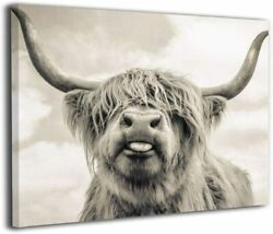 Freedom Highland Cow Pictures Canvas Wall Art