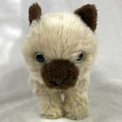 Animal Alley Siamese Cat Kitten Plush Cream with Brown Muzzle Ears 10quot;