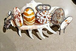 Amy Kahn Russell The Beach One Of A Kind S/s Natural Shell Bracelet