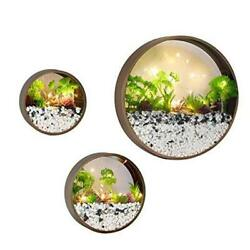 Modern Round Glass Wall Planter 3 Pack Set Wall Planters with LED Coffee