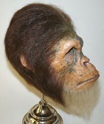 Jordu Schell Planet Of The Apes Chimp Monster Mask - Gallery Grade Punched Hair
