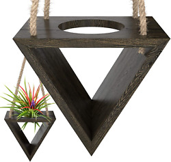Hanging Holder For Medium And Large Air Plants 2 Big Wall Plant Holders Un