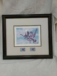 Ducks Unlimited Canadian Duck Stamp And Print Framed 1987 11689 Of 16000