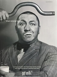 Curly Howard Of The Three Stooges Got Milk 1999 Promo Poster/ad 21x28cm Max