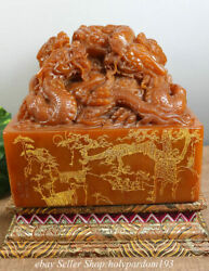 10 Chinese Natural Shoushan Stone Carved Fengshui Dragon Seal Signet Statue