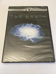 The Brain With David Eagleman Dvd 2015 Pbs - Ships Free In Box New Sealed