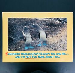 Vtg Funny Poster Argus 80s Everybody Here is Crazy Laminated Wall Office Den Art