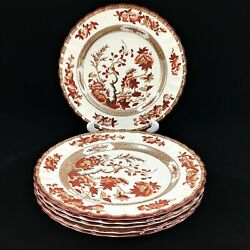 Set 6 Copeland Spode India Tree Dinner Plates With Old Mark Indian 10 1/4 Excel