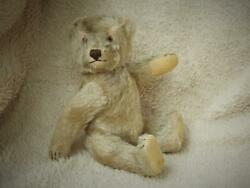 Steiff Vintage 1950s 9 Firm Bodied Jointed Mohair Teddy Bear Milo No Button