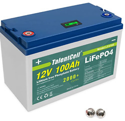 12v 100ah Lithium Battery Lifepo4 Deep Cycle W/ Bms And 3-warranty Usa Fast Ship