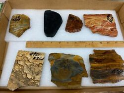 Lapidary Slabs 7 Pc Lot Rough Rock 1/4 Thick Tiger Eye Picture Jaspers Etc.
