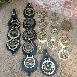 Amazing Vintage Lot Of 19 Assorted Brass Horse Bridle Harness Medallions