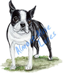 Boston Terrier Pet Dog Lover Vinyl Decal - Car Home Truck SUV Boat RV