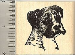 Boxer Dog Rubber Stamp Portrait with Uncropped Ears H4417 WM