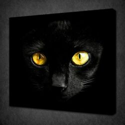Black Cat Shiny Yellow Eyes Canvas Wall Art Picture Print Ready To Hang
