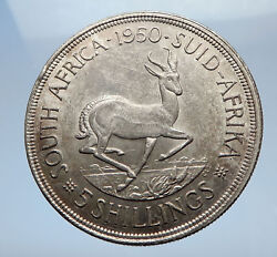 1950 South Africa Large Silver 5 Shillings Coin George Vi Springbok Deer I69424