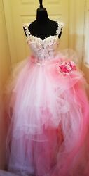 Ivory Pink Embroidered Lace Tulle Victorian Garden Bridal Wedding Ballgown Set