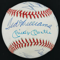 Immaculate 500 Home Run Club Signed Ball 11 Mickey Mantle Ted Williams Jsa