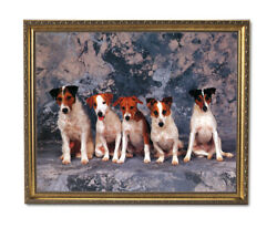 Jack Russell Terrier Puppy Dog Animal Wall Picture Gold Framed Art Print