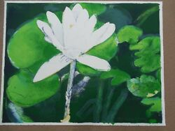 Joseph Raffael Winter Moon Lily 1978 Hand Signed And Numbered Litho Beautiful