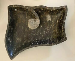 Huge Carved Marble Prehistoric Fossil Bowl Ammonite Show Piece 18x15andrdquo Heavy Duty
