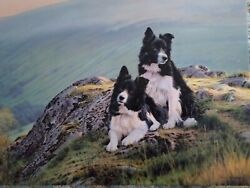 Steven Townsend END OF A WORKING DAY Border Collies on canvas no 24 of just 50