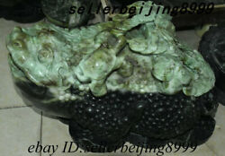 China Dushan Yu Jade Carving Animal Golden Toad Spittor Turtle Ruyi Coins Statue