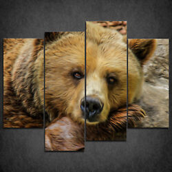 Brown Grizzly Bear Oil Painting Style Cascade Canvas Print Wall Art Ready Hang
