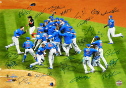 2016 Chicago Cubs Team Signed World Series Celebration 16x20 Photo 24 Sigs -ss