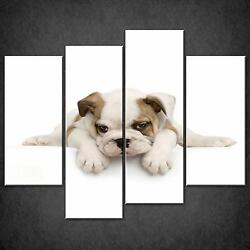 Puppy Of English Bulldog Cascade Canvas Wall Art Print Picture Ready To Hang