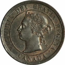 1900 No-h Canada Large Cent-gorgeous Ch/gem Bu Brn Collector Coin-d369ucqth