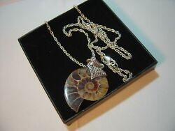 Beautiful Vintage Solid Silver-24 Chain Andsuperb Big Whole Half Ammonite Pendent