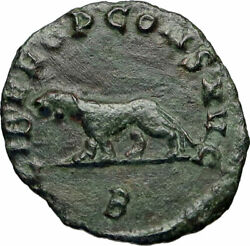 Gallienus Last Issue Of Rome 267ad Authentic Ancient Roman Coin Panther I84316
