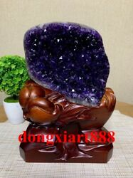 26 Cm Natural Amethyst Crystal Lucky Feng Shui Specimen Energy Heal Statue F213