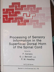 Processing of Sensory Information the Superficial Dorsal Horn of the Spinal Cord