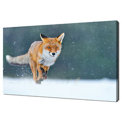 Red Fox Running Hunting Animal Modern Canvas Print Wall Art Picture