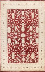 Vegetable Dye Peshawar-chobi Oriental Area Rug Hand-knotted Large Carpet 10and039x14and039