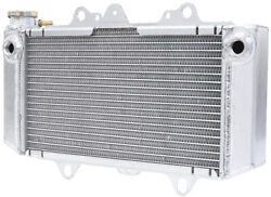 Fluidyne Radiator For Yamaha Rhino 700 08-13 Fps11-8rhino