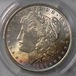1886 Morgan 1 Colorfully Toned Obverse Section Pcgs Certified Ms63 Toned Silver