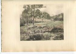 Antique Beautiful Landscape End Of Summer Queen Anneand039s Lace Flowers Nature Print