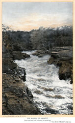 Rio Roosevelt Brazil Wilderness Equatorial Forest Rapids Rubber Camp 1914 Pages