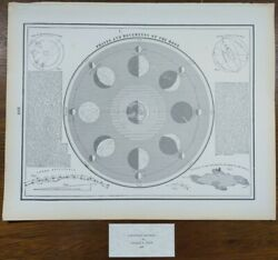 Vintage 1900 Phases And Movements Of The Moon Old Antique Original Diurnal Motion