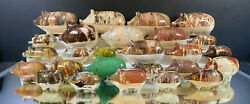 Pig Stoneware Bank Collection--mocha--total Of 35--assembled Between 1977-1988