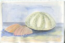 Vintage Sea Urchin Shell Scallop Sea Shells Impressionism Listed Artist Painting