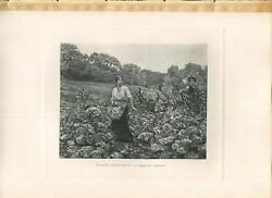Antique Farm Girl Vegetable Cabbage Garden Field Goodbye Loved One Army Print