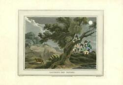 813 Field Sport Antique Aquatint 'catching The Badger' Hunting Dogs Guns Sg17