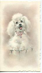Vintage French White Poodle Dog Pink Jeweled Collar Paws Paper Card Art Print