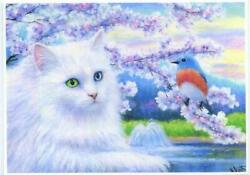 Aceo White Long Haired Cat Named Lily Robin Bird Spring Blossoms Lake Art Print