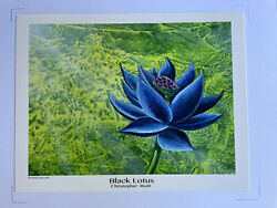Black Lotus - Mtg High Quality Print By Christopher Rush Mtg 8andrdquox10andrdquo Authorized